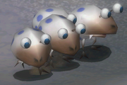 Snow Bulborb