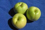 Green Nectarine (unripened)
