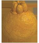Höckerfrucht