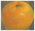 Citrus lump