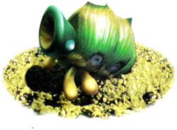 Armored Cannon Beetle Larva