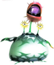 Creepingchrysanthemum