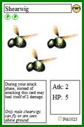 Shearwig Card 1