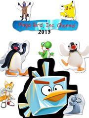 Pinga Bird 2013
