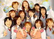 Morning Musume and Hamsters