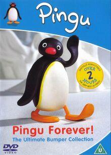 Pinqu-Pingu-Forever-DVD-NL