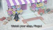 WatchYourStep,PinguTitleCard