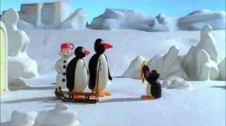 Pingu Sledge Academy