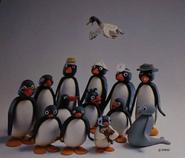 PinguGroupPhoto2