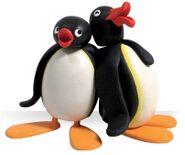 Pingu&Pingo