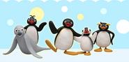 PinguGroupPITC