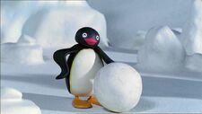 PinguandtheSnowball