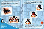 PinguForever!UKDVDInlay