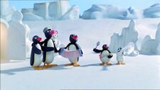 PinguandtheBand