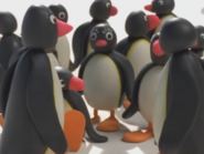 Pingi'sMotherPinguShow