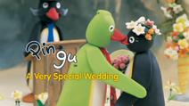 AVerySpecialWedding-DVDTitleCard