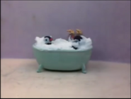 Pingu and Pinga taking a bath