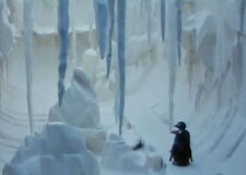 Pingu'sIceCave