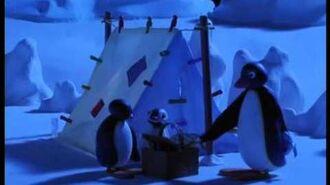 115 Pingu and Pinga Go Camping