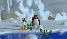 PinguandtheSchoolPet