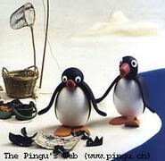 Pingu picture5-1-
