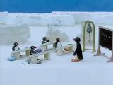 South Pole Public School