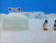 Pinguatthedoctors5