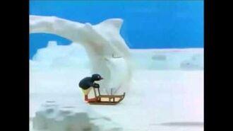 Pingu Goes Ice Surfing