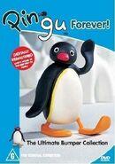 PinguForever!-AUScover