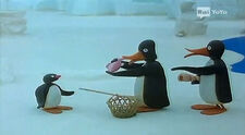 PinguandtheStrangers