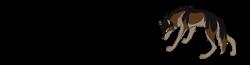 Wilkipedia (współpraca)