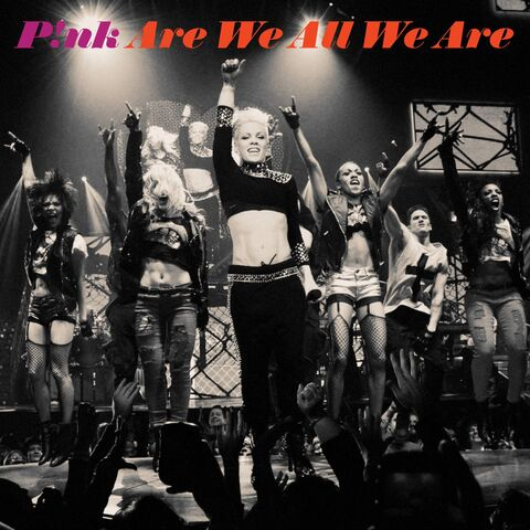 File:P!nk - Are We All We Are.jpg