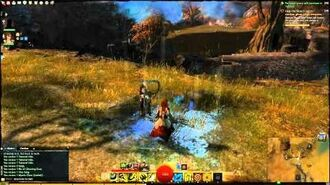 Guild Wars 2 - Ghostly reminder that red circles are BAD (and dont irritate the chef)
