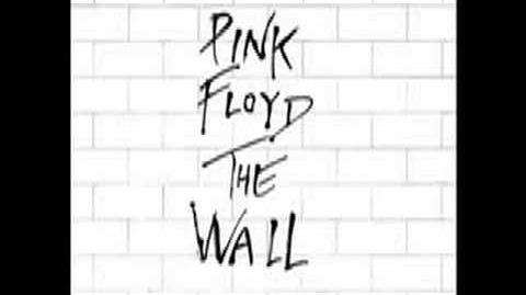(2)THE WALL- Pink Floyd-The Thin Ice