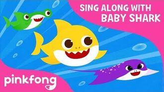 Race Sharks Pinkfong Wiki Fandom Powered By Wikia