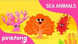 Hoy-hoy, Coral - Sea Animal Songs - Animal Songs - Pinkfong Songs for Children
