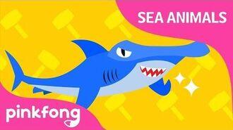 Boom, Bang, Hammerhead Shark - Sea Animals Song - Pinkfong Songs for Children