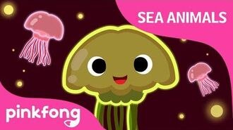 Wibble wobble, Jellyfish - Sea Animal Songs - Animal Songs - Pinkfong Songs for Children