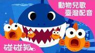 鯊魚一家 動物兒歌1 臺灣配音 碰碰狐PINKFONG
