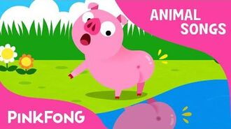 Did You Ever See My Tail? - Animal Songs - PINKFONG Songs for Children
