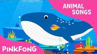 Whoosh, Blue Whale - Blue Whale - Animal Songs - Pinkfong Songs for Children