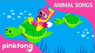 Under the Sea - Animal Songs - Pinkfong Songs for Children