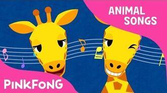 Che Che Koolay Giraffe - Giraffe - Animal Songs - Pinkfong Songs for Children