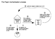 Pippin Authentication process