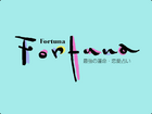 PA Fortuna titlescreen