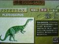 PA Agnes Chan Dinosaur Museum screenshot.png