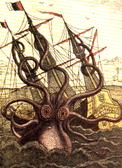 !kraken