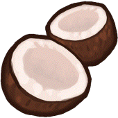 File:Icon Coconut.png