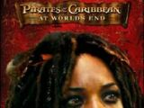 Pirates of the Caribbean: At World's End: The Mystic's Journey