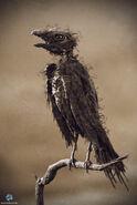 JK-bird 2